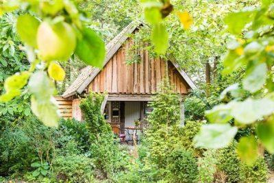 Vakantiehuis Borculo - Nederland - Gelderland - 4 personen